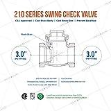 Midline Valve 432U225 Swing Check Valve, Backflow