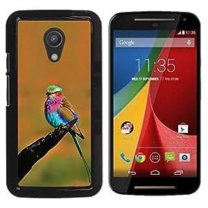 Caucho caso de Shell duro de la cubierta de accesorios de protección BY RAYDREAMMM - Motorola MOTO G 2ND GEN II - Colorful Bird Summer
