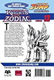 Knights of the Zodiac (Saint Seiya), Vol. 13