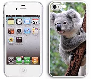 Apple iPhone 4 4S 4G White 4W304 Hard Back Case Cover Color Koala Bear on Branch