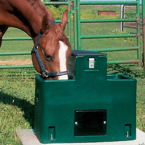 Lil Spring Double Side Waterer Green by Miraco