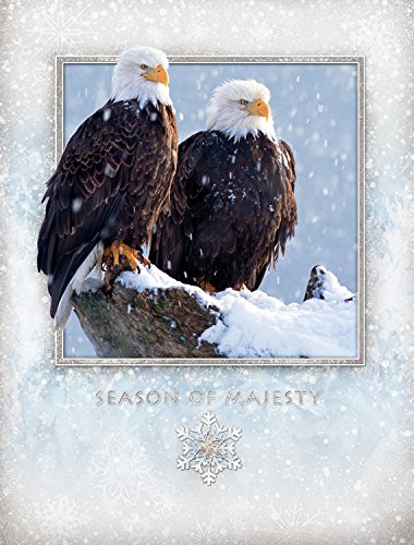 - Eagle Majesty Christmas Cards