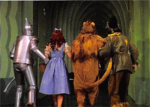 Well understand dorothy and tin man scarecrow lion rather valuable