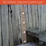 Back40Life 48'' Premium Engraved Wooden Growth Height Chart Ruler - The Typewriter (Dark Walnut + Antique White)