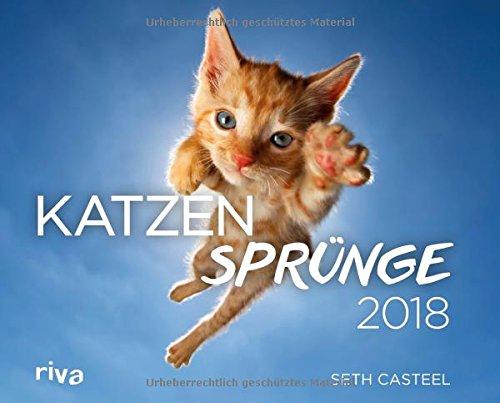 katzensprnge-2018-wandkalender