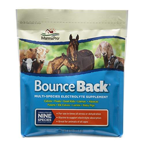 Manna Pro Bounce Back