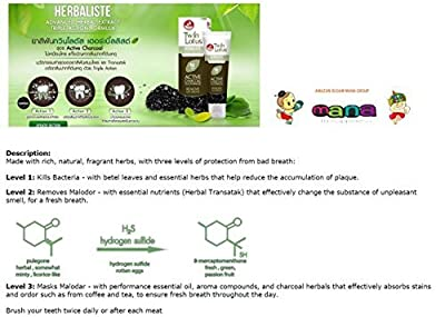 TWIN LOTUS ACTIVE CHARCOAL TOOTHPASTE HERBALISTE Triple Action Powered By Siam-Mana-Group