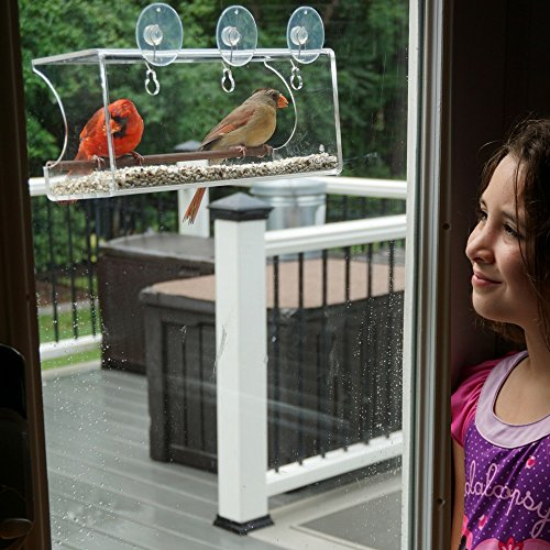 Review Large Window Bird Feeder: