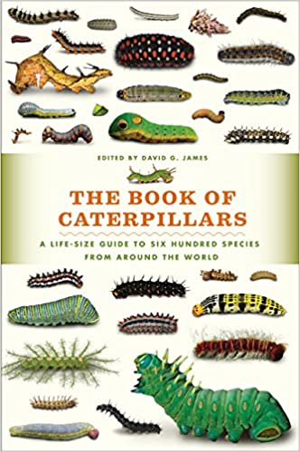 2a63ea45c47ed The Book of Caterpillars  A Life-Size Guide to Six Hundred Species from  around the World  David G. James  9780226287362  Amazon.com  Books