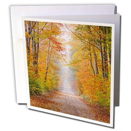 3drose-danita-delimont-michigan-road-in-fall-color-schoolcraft-county-upper-peninsula-michigan-6-gre