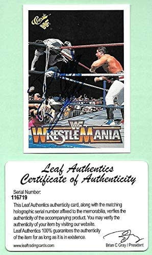 [해외]2017 Leaf Buybacks `90 Classic WWF 21 Danny Davis On Card Autograph COA / 2017 Leaf Buybacks `90 Classic WWF 21 Danny Davis On Card Autograph COA