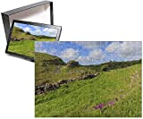 Photo Jigsaw Puzzle of Early purple orchids (Orchis mascula) and Peter s Rock, Cressbrook Dale