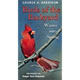 Birds of the Backyard