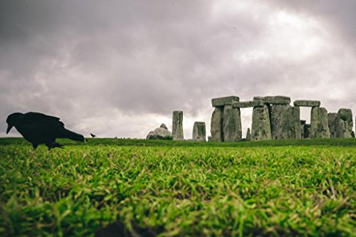 stonehenge picture - 8