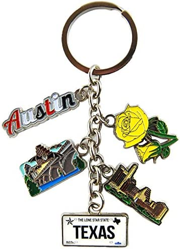 NASA Logo Dangle Keychains Perfect Souvenir Gift Collection