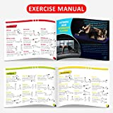 WEBU 3-Pack Exercise Dice with Manual | Amazing for