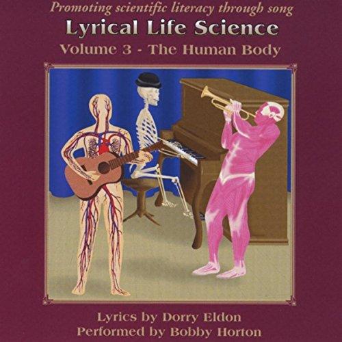 The Skeletal System (Tarantella)