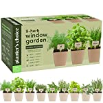 Indoor Organic Herb Growing Kit