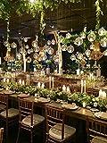 EssenceLiving Hanging Glass Orbs, Hanging Candle Holders, Glass Terrariums, Tealight Holders, Glass Globe, Wedding Centerpiece, Wedding Supplies (100)