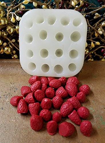 Strawberry Mini Embeds 17 Cavity Silicone Mold (Candle Embed)