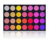 Best SHANY Cosmetics Quality Makeup Brushes - SHANY Masterpiece 28 color Dramatic Eye shadow Palette/Refill Review