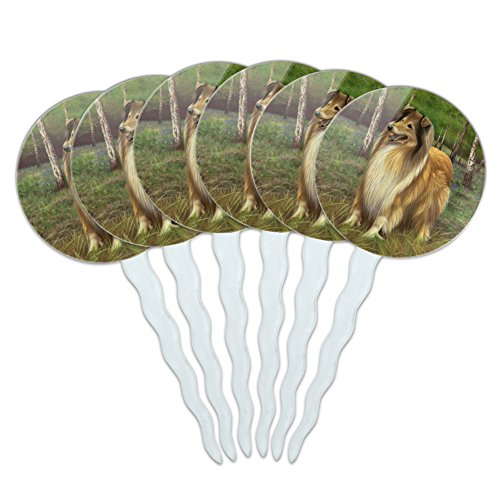 GRAPHICS & MORE Collie Dog in The Woods Cupcake Picks Toppers Decoration Set of 6