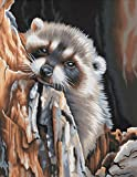 Dimensions Needlecrafts Paintworks Paint By Number, Daydreaming Raccoon