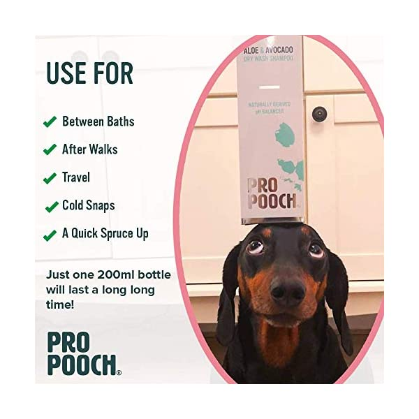 Pro Pooch Dry Shampoo For Dogs (200 ml) Quick Drying Waterless No Rinse Mousse. 5