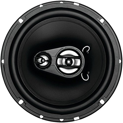 SOUNDSTORM EX365 EX Series Full-Range 3-Way Loudspeaker (6.5