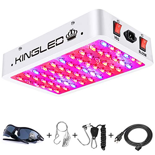 King Plus 600W LED
