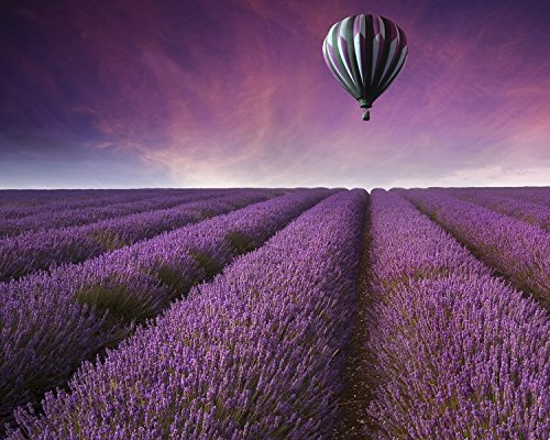 Lavender Field & Hot Air Balloon Sunset Fine Art Photograph, Landscape Wall Art, Travel Picture, Living Room Wall Art, Bedroom Decor, Office - England Picture Hot