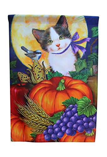 Lantern Hill House Flag Yard Decoration; 28 inches by 40 inches (Cat with Pumpkins)