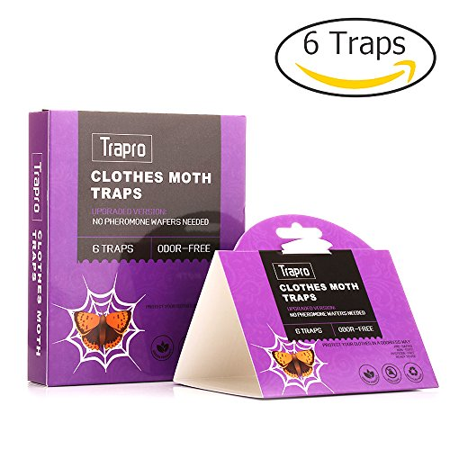 clothes-moth-traps-with-pre-baited-pheromone-attractant-non-toxic-and-odor-free-6-traps
