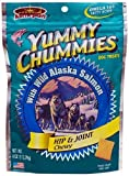 Arctic Paws Vita Chummiest 4-Ounce Yummy Chummies Vitamin Treats (Hip & Joint)
