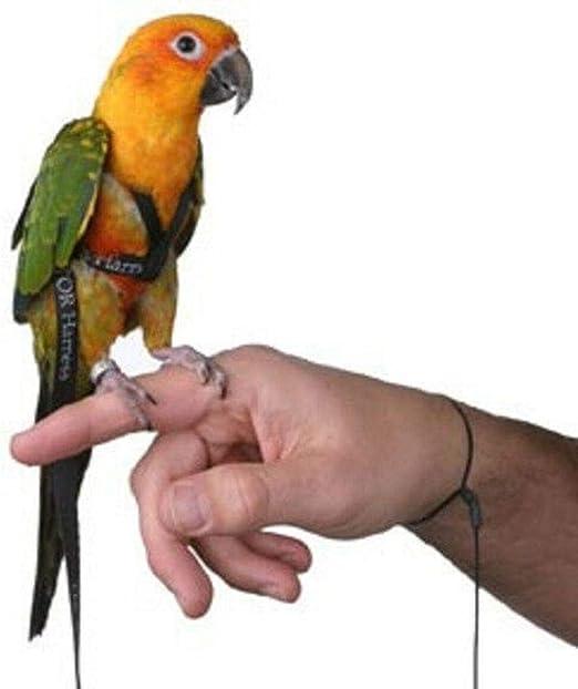 luminiu Anti-Bite Ajustable Arnés y Correa,Bird Leash con Correa ...