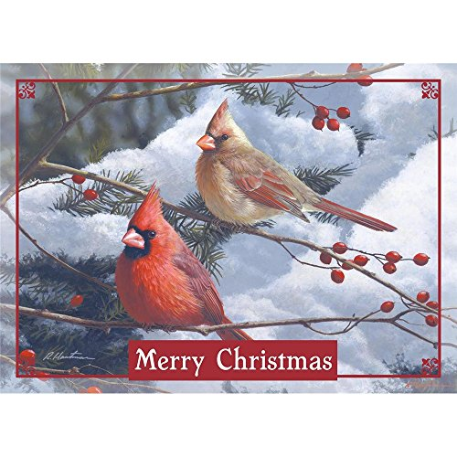 Legacy Publishing Group Deluxe Boxed Holiday Greeting Cards  Cardinals And Berries  Hbx41956