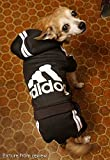 Idepet Cotton Adidog Dog Hoody