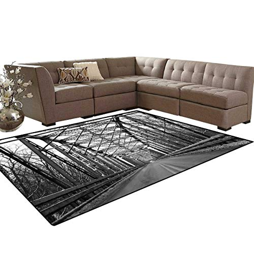 - Black and White Room Home Bedroom Carpet Floor Mat Road Through Bridge Tunnel Urban City and Modern Architecture Image Door Mats Area Rug 6'6