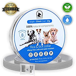 Flea Tick Collar Prevention Control for Dogs - 8 Months - Natural Herbal Non-Toxic Adjustable Flea Collar Waterproof Protection for Large Medium Small Pet Supplies Repels Fleas Lice Ticks Mosquitoes 4