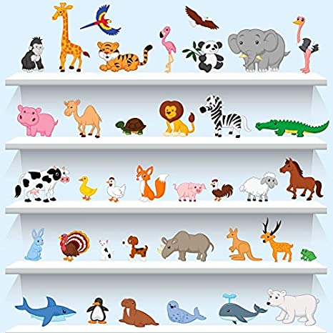 Buy Wall4stickers Animals Wall Stickers Educational Learning Kids Room Decal Children Art Birds Decals Graphics Murals Wallpapers Online At Low Prices In India Amazon In