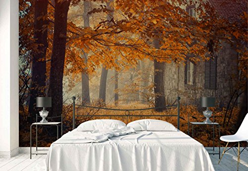 Photo wallpaper wall mural - Autumn Woods Trees - Theme Forest & Trees - XL - 12ft x 8ft 4in (WxH) - 4 Pieces - Printed on 130gsm Non-Woven Paper - 1X-712574V8 ()