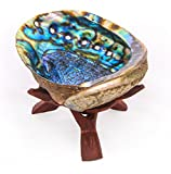 "Alternative Imagination 5""+ Hand Selected Premium Abalone Shell with 6"" Wooden Cobra Stand"