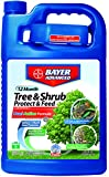 Bayer Advanced 701615 12 Month Tree and Shrub Protect and Feed Concentrate, 1-Gallon