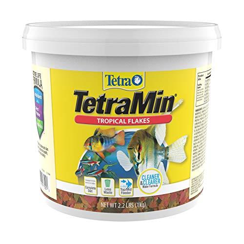 TetraMin Nutritionally Balanced Tropical Flake Food for Tropical Fish (Best Tropical Fish For Home Aquarium)