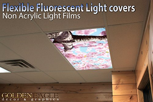 Suspended Ceiling Fluorescent Lights - 3