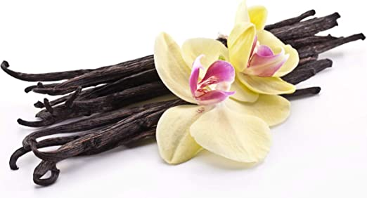 Lilygardencandles Bougie parfum/ée vanille dans un verre de paysage moyenne parfum selon la vanille 50 heures de combustion 100 /% cire de soja
