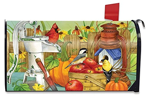 Briarwood Lane Autumn Display Birds Magnetic Mailbox Cover Apples Pumpkins Fall Standard