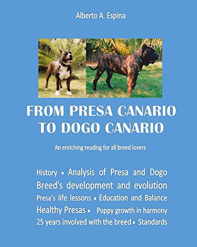 From Presa Canario To Dogo Canario An Enriching Reading For All