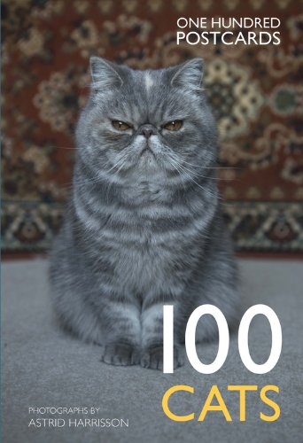 Download 100 Cats in a Box: One Hundred Postcards Text fb2 book