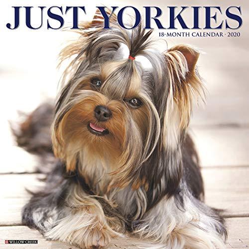 (Just Yorkies 2020 Wall Calendar (Dog Breed Calendar))
